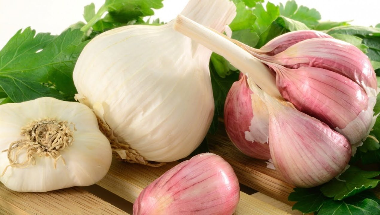Newly developed high yield garlic worth millions gets stolen from Pakistan's research labs
